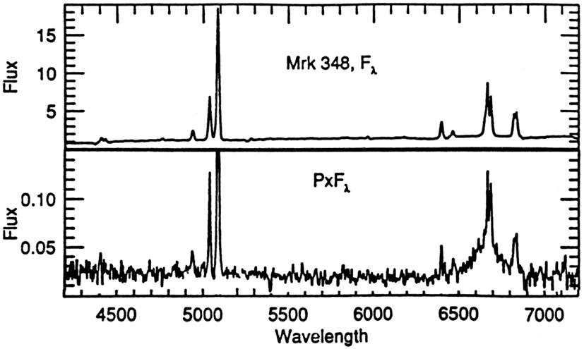 Emission Line Galaxy Emission Lines After