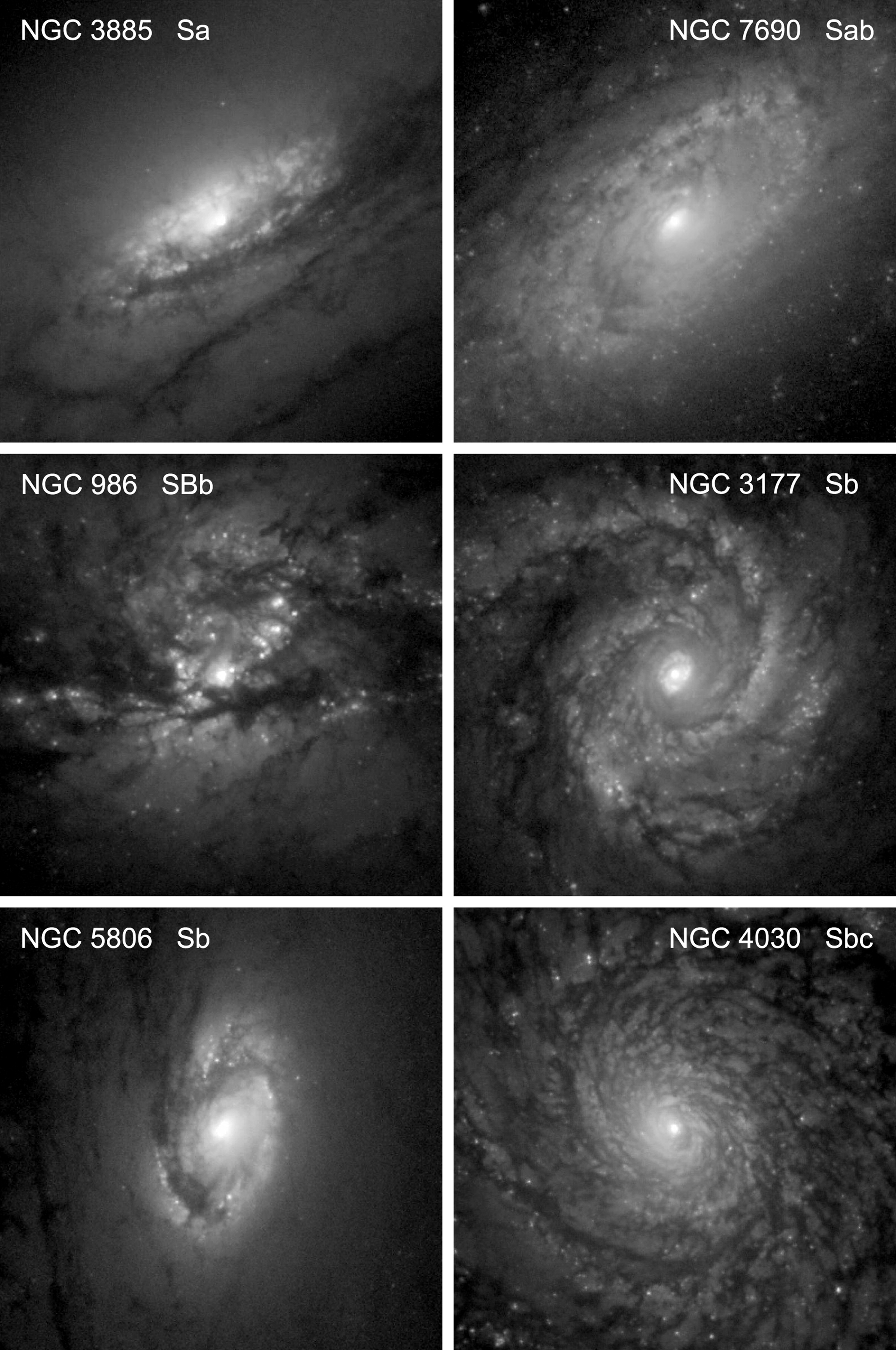 SECULAR EVOLUTION AND THE FORMATION OF PSEUDOBULGES IN DISK – Types of Galaxies Worksheet